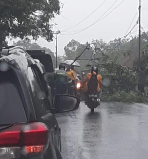 Photo of Hujan Lebat, Pohon Tumbang Akibatkan Kemacetan