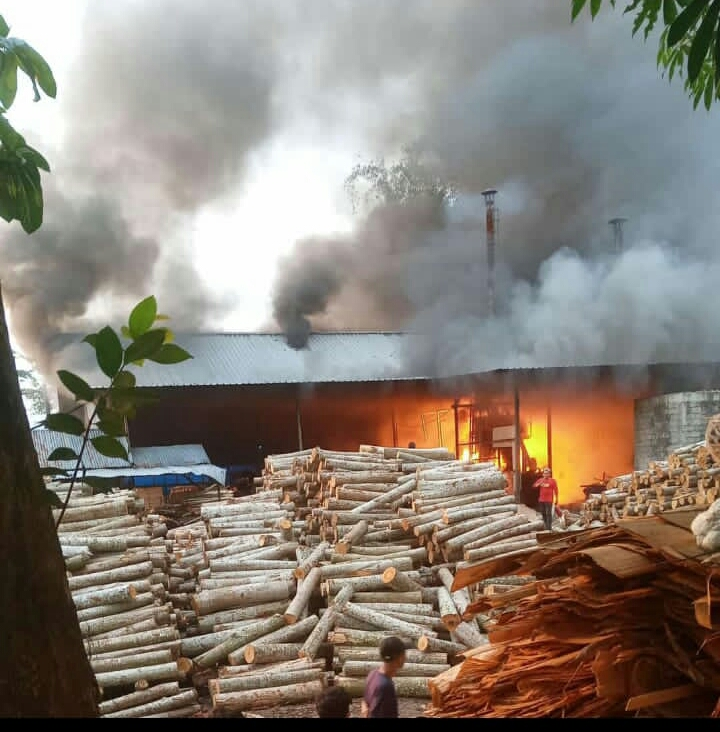 Photo of Pabrik Triplek Di Kendarejo Talun Terbakar, Korban Alami Kerugian Ratusan Juta